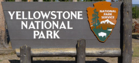More Road Work in Yellowstone: Mammoth to Norris Closed