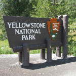 Young Girl Falls to Death in Yellowstone's Grand Canyon