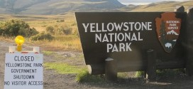 Yellowstone Shutdown